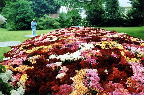 Фото самого большого в мире букета роз
